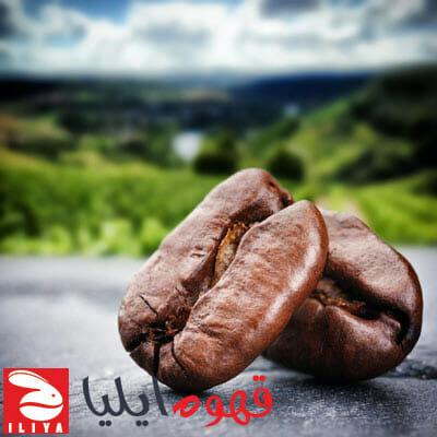 تولید قهوه