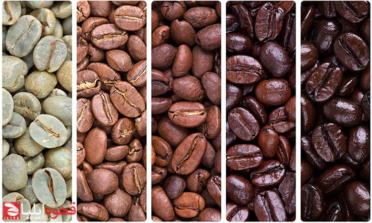 مقایسه رست تیره و رست روشن قهوه