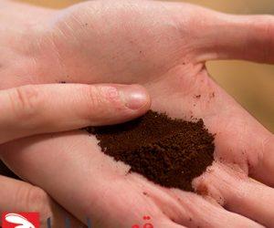 آسیاب-قهوه-شاخص