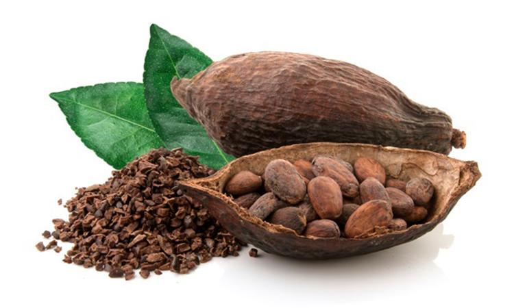 دانه کاکائو