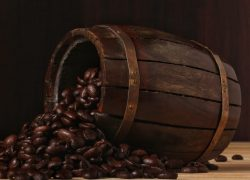 Roasted Coffee Seed in a Gold Barrel