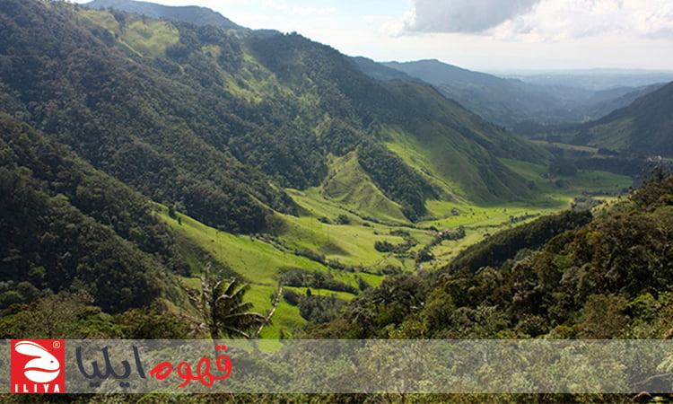 کوه های کلمبیا و مزارع قهوه