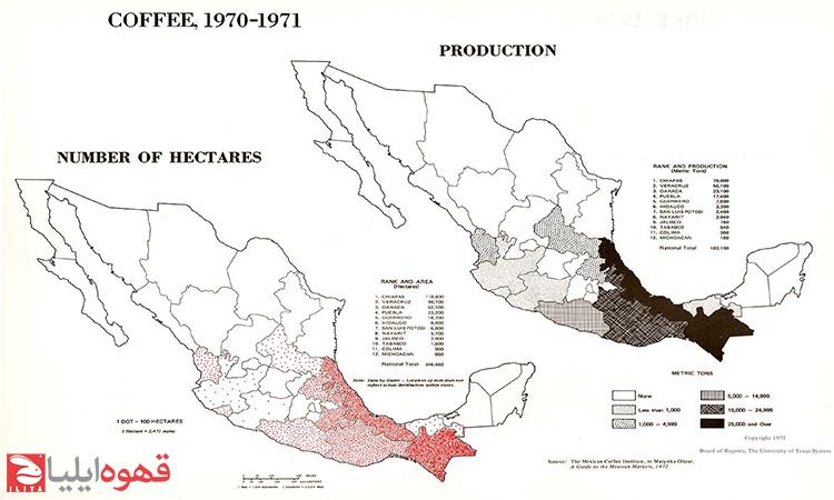 فرهنگ قهوه در مکزیک (Mexican coffee culture)